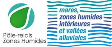 Le Pôle-relais mares, zones humides intérieures et vallées alluviales