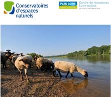 Journée technique «Pour une gestion durable et pérenne des vallées alluviales par le pâturage»