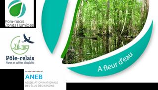 A Fleur d'Eau n°64 – Découvrez la newsletter d'avril 2020 du Pôle-relais mares et vallées alluviales