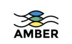 Participez au projet AMBER en partageant vos actions sur la restauration des rivières !