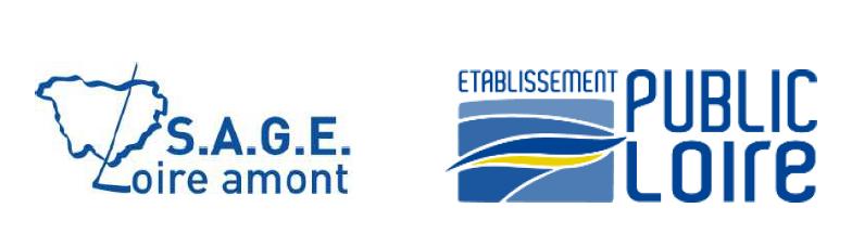 Etat des connaissances et gestion de la baisse d'infiltrabilité (ou capacité d'infiltration) sur le bassin versant du SAGE Loire amont