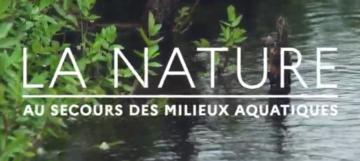 [Vidéo] La nature au secours des milieux aquatiques
