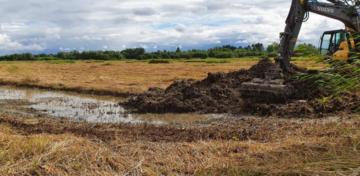 La Basse Vallée de Somme dévoile ses zones humides