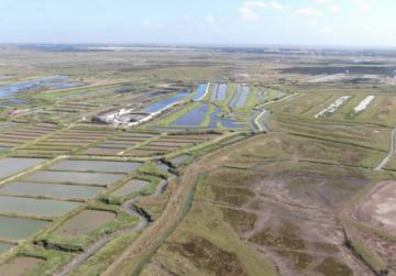[Vidéo] Les inventaires anguilles dans les marais de la Seudre