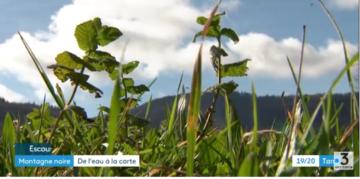 Vidéo – Des étudiants cartographient des zones humides de la Montagne Noire (Tarn)