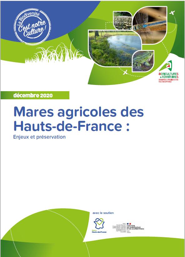 Mares agricoles des Hauts-de-France – Enjeux et préservation