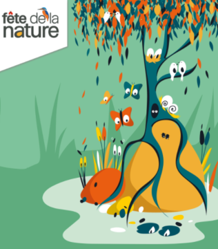 Fête de la nature 2021 : à travers mille et un regards