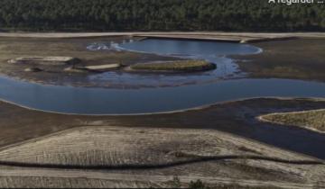 [Vidéo]-Projet ReZHilience 2021- 2024 : pour la restauration des zones humides